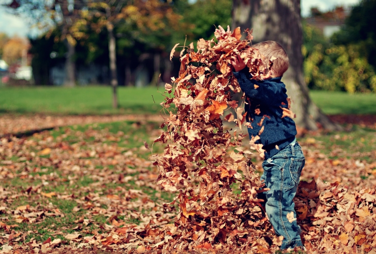 child-thowing-fall-leaves